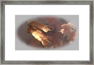 Doggie Brotherhood Framed Print by Usha Shantharam