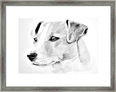 Doggie Framed Print by Janet Moss
