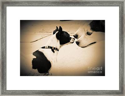 Doggie Meet 'n Greet 2 Framed Print