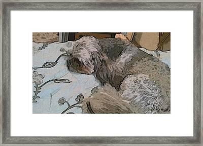 Doggie Nap Framed Print