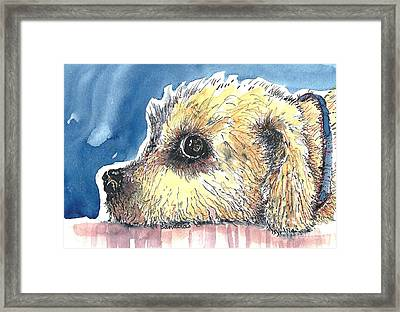 Doggy Being Scolded Framed Print