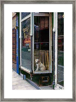 Doggy In The Window Version - 4 Framed Print