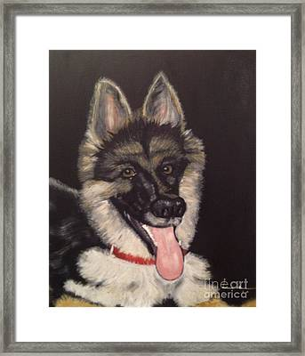 Dogs Are Human's Best Friends Framed Print by Brindha Naveen
