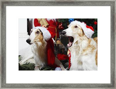 dogs Borzoi puppies and Christmas greetings Framed Print by Christian Lagereek