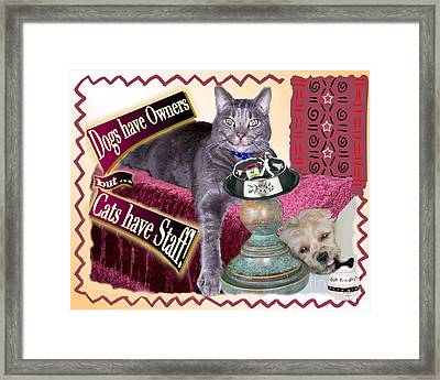 Dogs Have Owners - Cats Have Staff Framed Print