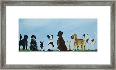 Dogs Looking For Our Forever Home Framed Print