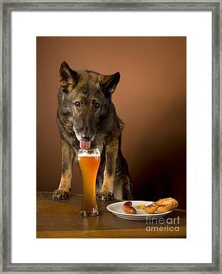 Dogs Love Beer Framed Print