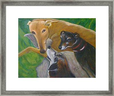 Dogs Resting Framed Print