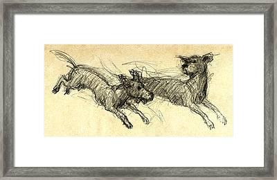 Dogsketch Framed Print by Nato  Gomes