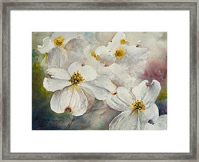 Dogwood 6 Framed Print