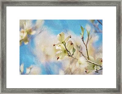 Dogwood Against Blue Sky Framed Print by Lois Bryan