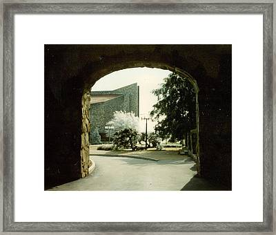 Dogwood Arch Framed Print