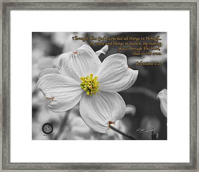 Dogwood Bloom Framed Print