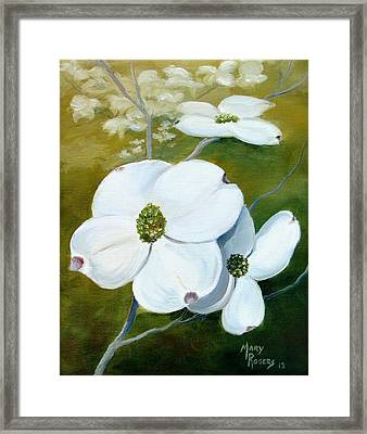 Dogwood Blossoms Framed Print by Mary Rogers