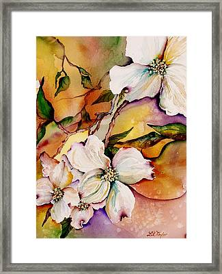 Dogwood In Spring Colors Framed Print