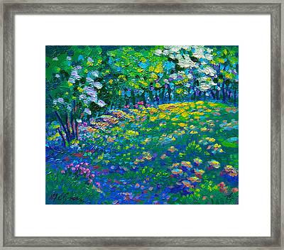 Dogwoods Day Framed Print