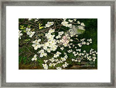 Framed Print featuring the painting Dogwoods Virginia by Melly Terpening