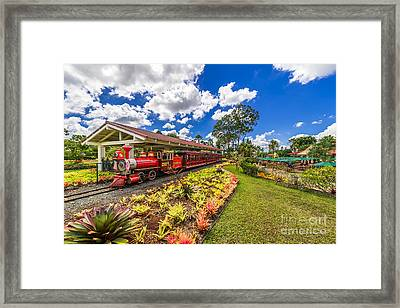 Dole Plantation Train Framed Print by Aloha Art