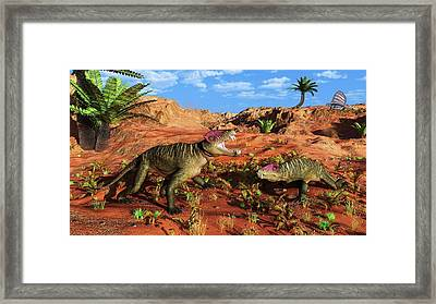 Doliosauriscus Therapsids Framed Print by Walter Myers