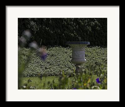 Dolley Digital Art Framed Prints