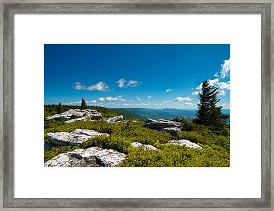 Dolly Sods Framed Print