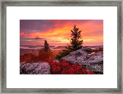 Dolly Sods Wilderness D30018216 Framed Print by Kevin Funk