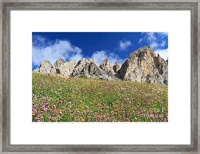 Framed Print featuring the photograph Dolomiti - Flowered Meadow  by Antonio Scarpi