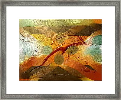 Dolphin Abstract - 2 Framed Print