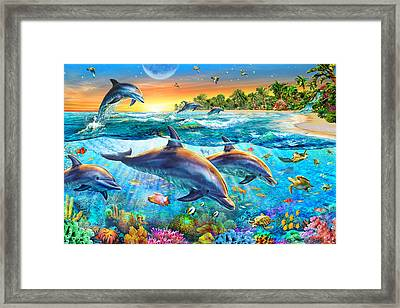 Dolphin Bay Framed Print by Adrian Chesterman