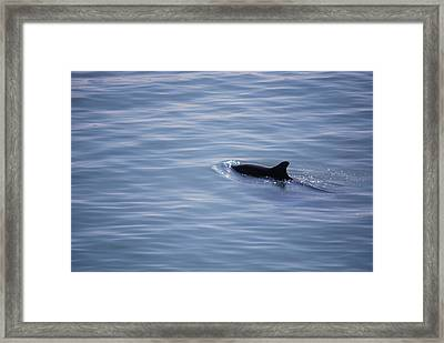 #lifemovesalonglikewater Framed Print by Becky Furgason