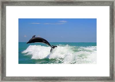 Framed Print featuring the digital art Dolphin Flip 2 by Kara  Stewart
