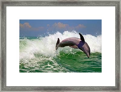 Framed Print featuring the digital art Dolphin Flip by Kara  Stewart