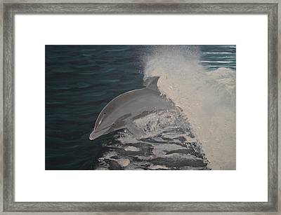 Dolphin In The Wake Framed Print