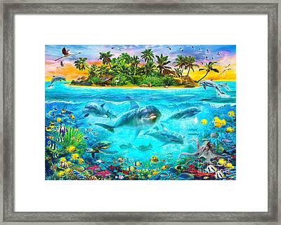 Dolphin Paradise Island Framed Print