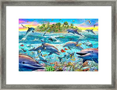 Dolphin Reef Framed Print by Adrian Chesterman
