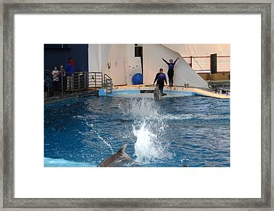 Dolphin Show - National Aquarium In Baltimore Md - 1212105 Framed Print