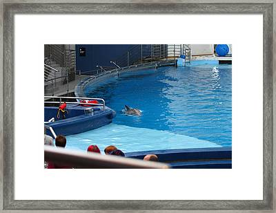Dolphin Show - National Aquarium In Baltimore Md - 1212116 Framed Print by DC Photographer