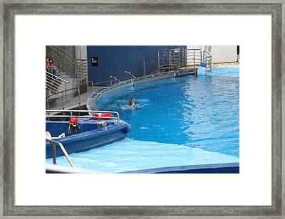 Dolphin Show - National Aquarium In Baltimore Md - 1212125 Framed Print by DC Photographer