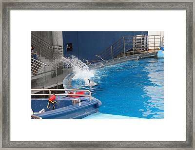 Dolphin Show - National Aquarium In Baltimore Md - 1212132 Framed Print by DC Photographer