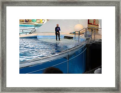 Dolphin Show - National Aquarium In Baltimore Md - 1212133 Framed Print by DC Photographer