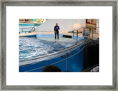 Dolphin Show - National Aquarium In Baltimore Md - 1212134 Framed Print