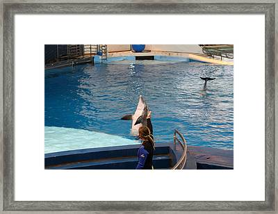 Dolphin Show - National Aquarium In Baltimore Md - 1212145 Framed Print by DC Photographer