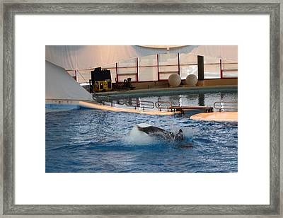 Dolphin Show - National Aquarium In Baltimore Md - 1212167 Framed Print by DC Photographer