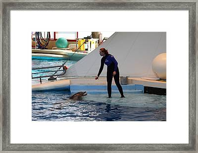 Dolphin Show - National Aquarium In Baltimore Md - 1212196 Framed Print