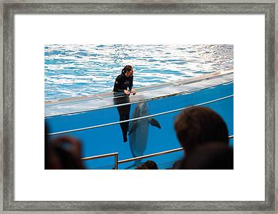 Dolphin Show - National Aquarium In Baltimore Md - 1212228 Framed Print