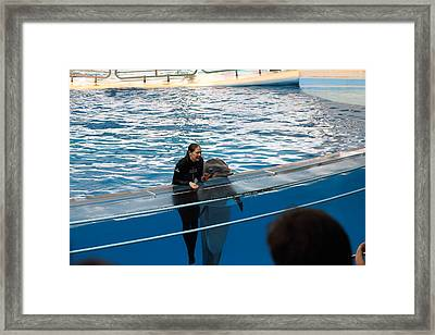 Dolphin Show - National Aquarium In Baltimore Md - 1212229 Framed Print by DC Photographer