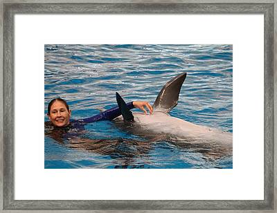 Dolphin Show - National Aquarium In Baltimore Md - 1212232 Framed Print