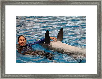 Dolphin Show - National Aquarium In Baltimore Md - 1212233 Framed Print