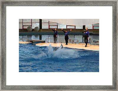 Dolphin Show - National Aquarium In Baltimore Md - 1212278 Framed Print by DC Photographer
