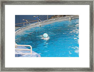 Dolphin Show - National Aquarium In Baltimore Md - 121236 Framed Print by DC Photographer